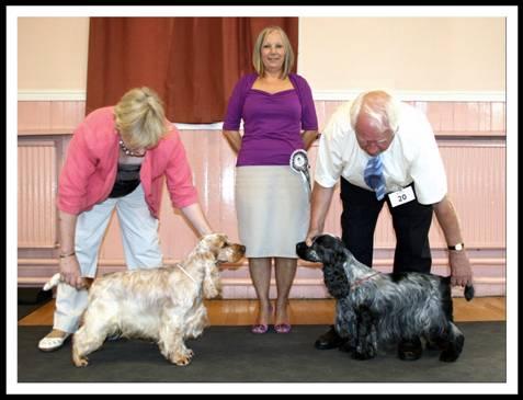 Roy Jones Dog Show Results For Cocker Spaniel